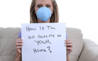 7 Simple Steps to Improve Air Quality in Your Home
